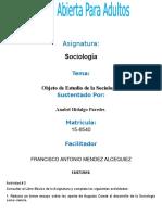Anabel Tarea II Sociologia
