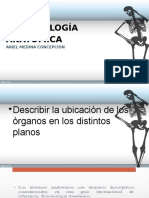 Terminologia,planimetria