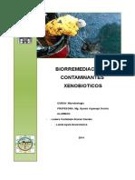 Biodegradacin de Contaminantes Xenobioticos