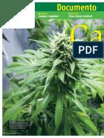 Cannabis, Mitos y Hechos - Muy Interesante MX - Nº1