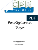 patologias bazo