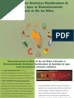 Biomonitoramento Novo