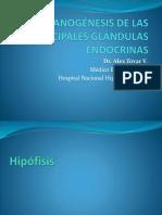 1. Organogénesis de Las Principales Glándulas Endocrinas