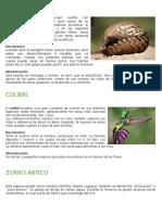 Animales Informacion