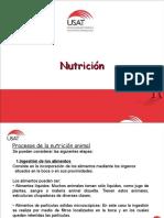 nutricionvfv