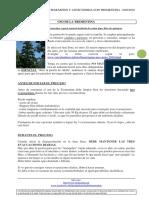 PPCT Resumido (Protocolo Parásitos y Cándida Con Trementina)