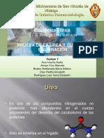 No. 7 Prueba de Urea