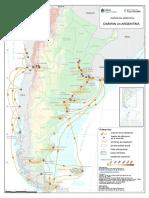 Charles Darwin y su paso por Argentina