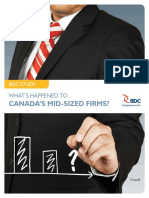 BDC Study Mid Sized Firms