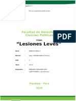 Lesiones Leves Yop (1)