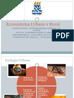 ecossistemaurbanoerural-131208202023-phpapp02