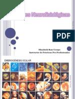 1. Desarrollo Embriológico de La Retina (1)