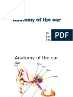 Anatomy of the Ear TMN New