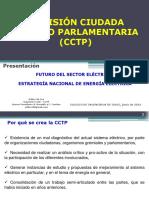 Estrategia Nacional de Energía Eléctrica. Comisión Ciudadana