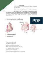 COLECTOMIA (1).docx