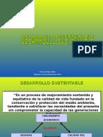 17° Desarrollo Sustentable