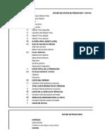 Costos Proyecto Empresarial 2013.xlsx