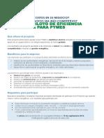 Proyecto Eficiencia Energetica PYMES