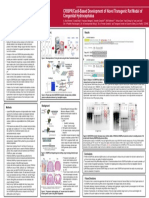 final version - surf 2016 rat-crispr-prh poster se
