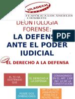 La Defensa Ante El Poder Judicial