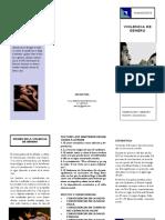 TRIPTICO V.pdf