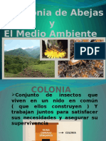Iniciacion Apicola 2.pptx