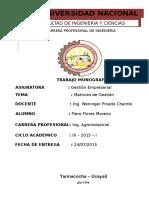 Monografia de Matrices Empresariales