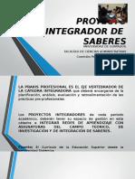 Diapositivas Proyecto Integrador (1)