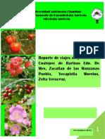 Coatepec de Harinas Edo. De Mex, Zacatlan de las Manzanas Puebla, Yecapixtla Morelos,  Zelta Veracruz,