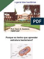 aula_biologia_geral_das_bacterias.pdf