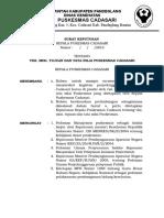 Kriteria 2.3.6.1 Sk Kapus Tentang Visi Misi Tujuan Dan Tata Nilai Puskesmas