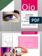 Presentación Globo ocular anatomia