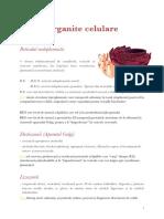 Organite celulare - schema Biologie vegetala si animala