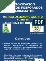 intoxicacionorganofosforadoycarbamatos-130927142812-phpapp02
