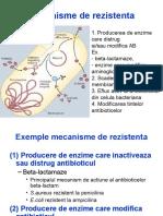 Antibiotice_mecanisme rezistenta