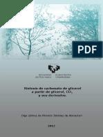 Tesis_Carbonato de Glicerol