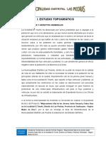 ESTUDIO-TOPOGRAFICO1