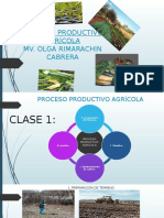 Proceso Productivo Agrícola