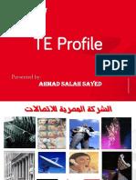 Telecom Egypt new.pdf