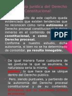 Naturaleza Jurídica del Derecho Procesal Constitucional (1).pptx
