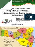 Substratos Supara Fungos Pressivos Como Perspectivas de Controle a Fitopatógenos Em Plantas Ornamentais