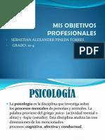 Mis Objetivos Profesionales