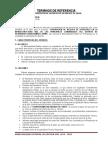 TDR - RESIDENTE DE prevencion de riezgo y desastre.docx