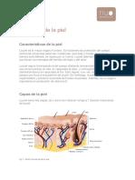 Anatomia_y_tipos_de_piel.pdf