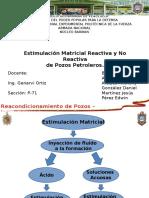 Diapositivas Estimulación Matricial