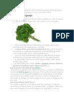 El perejil es uno de los vegetales con más propiedades antioxidantes.docx
