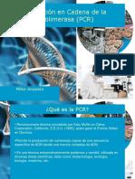 Clase 1_PCR
