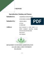 Internship REPORT 01.02