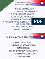 672_12_ASFIXIOLOGIA_FORENSE_ON_LINE.pdf