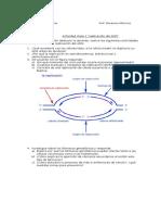 Actividades Clase 1 IV Medios Replicacion Del ADN